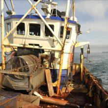 King Scallop Fishing Boat